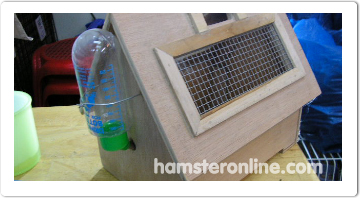 hamster-content-51